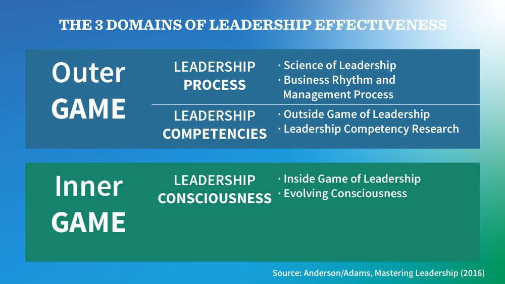 The 3 domains of leadership effectiveness from the book Mastering Leadership by Robert Anderson and William Adams