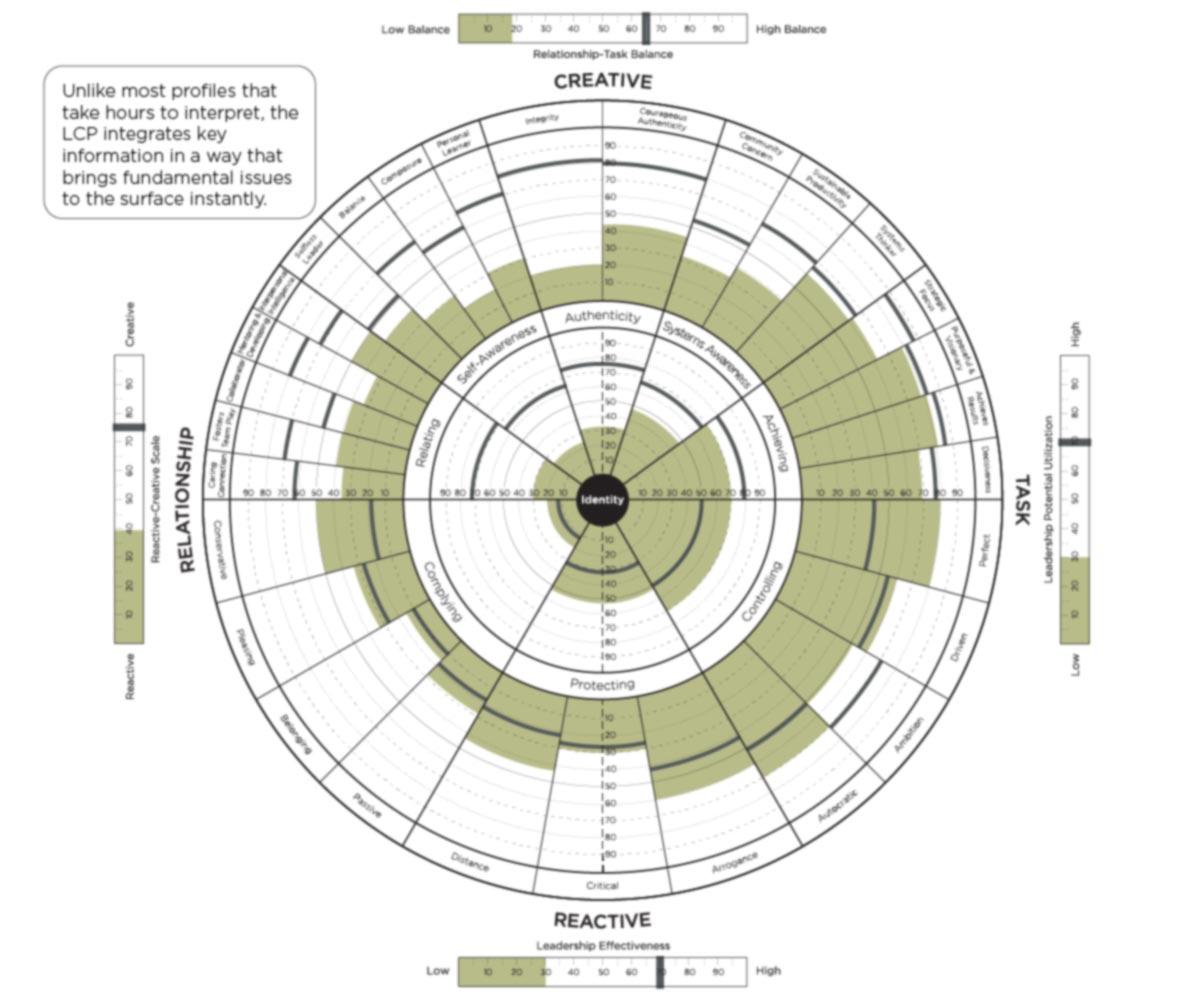 360 assessment Leadership Circle